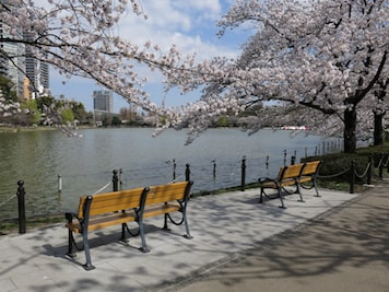 Ueno Onshi Park Tokyo Japan